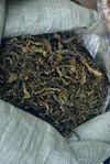Feuilles jaunes triées chez Wang Bing