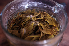 Tea leaves in a glass of water Yi Wu