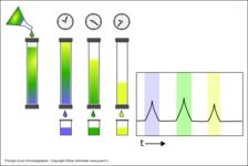 Principe d'une chromatographie
