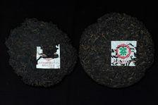 Shui Lan Yin 1997 à coté d'une 7452 de 2001