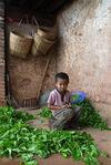 Daily Life in Bang Xie