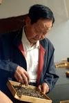 Zou Bing Liang en 2009