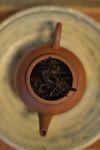 Infusion d'un thé de 100 ans