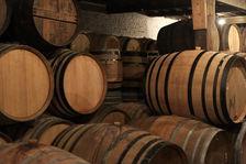 Dans les caves des Cantillon