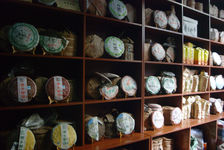 Multitude of young puerh <span class='translation'>(Pu Er tea)</span> shop in Yunnan