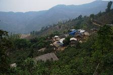 Maison au coeur des théiers anciens à Wa ZiZhai