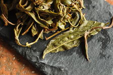 Leaves puerh <span class='translation'>(Pu Er tea)</span> infused