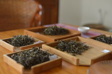 Comparison of different leaves puerh <span class='translation'>(Pu Er tea)</span> tea