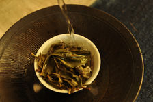 Puerh old tea bushes in a Gaiwan