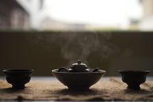 Dégustation d'un puerh <span class='translation'>(Pu Er tea)</span> affiné