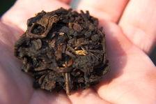 Fragment de galette remis en vrac