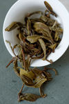 Dégustation d'un jeune puerh <span class='translation'>(Pu Er tea)</span> brut