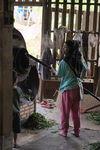 Atelier de transformation des feuilles en Thailande