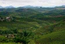 Paysage de Tai Di à perte d'horizon à Dadugang