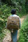 Jeune femme sur le chemin des théiers (Yi Wu)