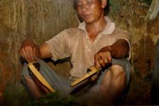 Récoltant travaillant les feuilles du jour à Bulang