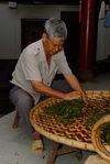 Pétrissage artisanal des feuilles de puerh <span class='translation'>(Pu Er tea)</span> dans une ferme de Yi Wu