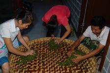 Kneading craft sheets puerh <span class='translation'>(Pu Er tea)</span> a farm in Wu Yi