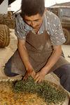 Pétrissage artisanal des feuilles de puerh <span class='translation'>(Pu Er tea)</span> à Pu'Er