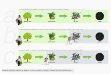 Différentes situations et répartition des étapes de travail entre récoltant et producteur