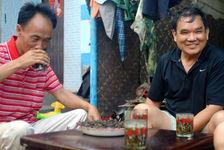 Infusion du Mao Cha dans des verres d'eau dans les villages producteurs (Jinuo Shan, Xishuangbanna)