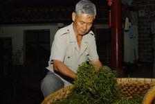 Roulage des feuilles à la maison dans une ferme de YiWu