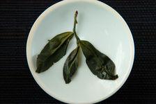 Leaf infused Cha Zi (Wang, Yi Wu)