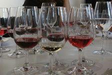 Le vin rouge comme explication du paradoxe français?