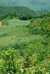 Paysage verdoyant à Yong De, Lincang