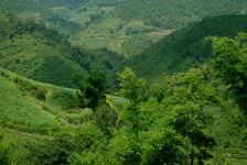 Montagnes verdoyantes de Yong De