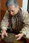 Vesper Chan detailing a 7811, first harvest