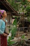 Femme bulang à Bulang Shan, Xishuangbanna