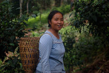 Ms. Lee in the tea gardens of the family