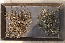Deux maocha de Wang Bing, d'automne (à gauche) et de printemps (à droite)