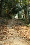Restes de la route du thé et des chevaux non loins du village de Yi Wu