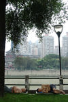 Quais de Chengdu