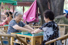 Elderly initiating Mahjong part in a tea