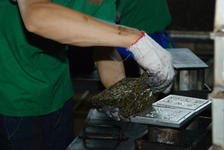 Production of square Banzhang Lao Sheng Chen 2010