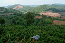 Site on which Chen Sheng He built his factory in Menghai