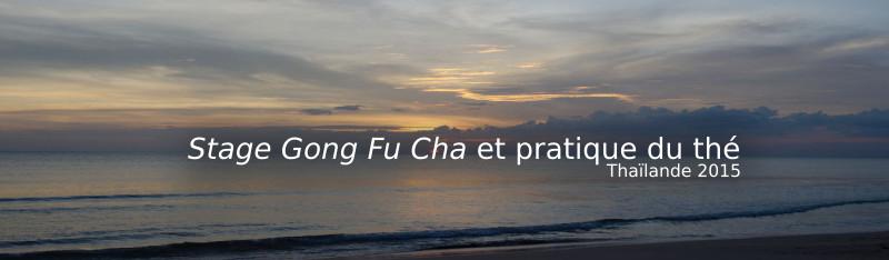 Stage Gong Fu Cha et pratique du thé Thailande 2015